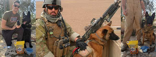 sgt-paws-2